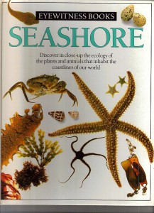 eyewitness books Seashore