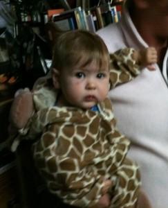 serious giraffe
