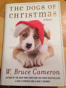 Christmas books make great gifts!