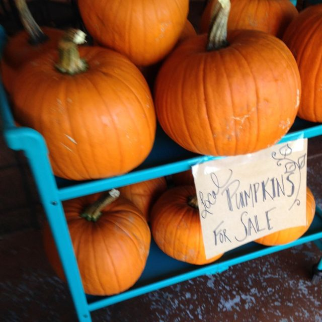 We still have lots of locally and organically grown pumpkinshellip